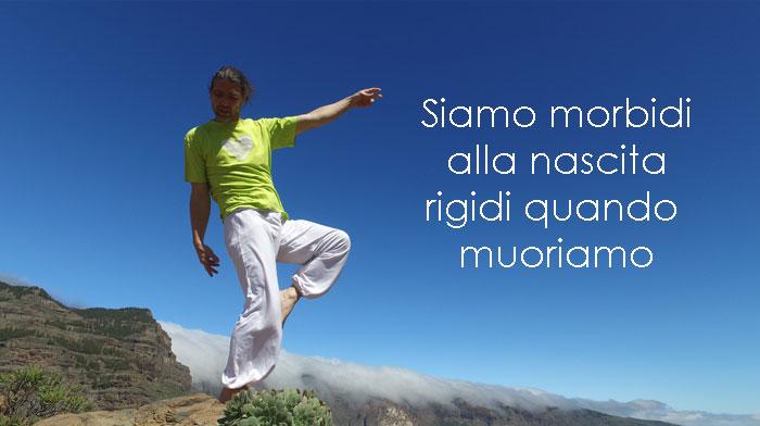 Letto Morbido O Duro : Ricordati di essere morbido yoga articoli